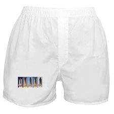 space shuttles Boxer Shorts
