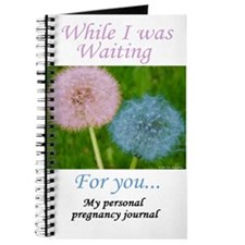 My Personal Pregnancy Journal