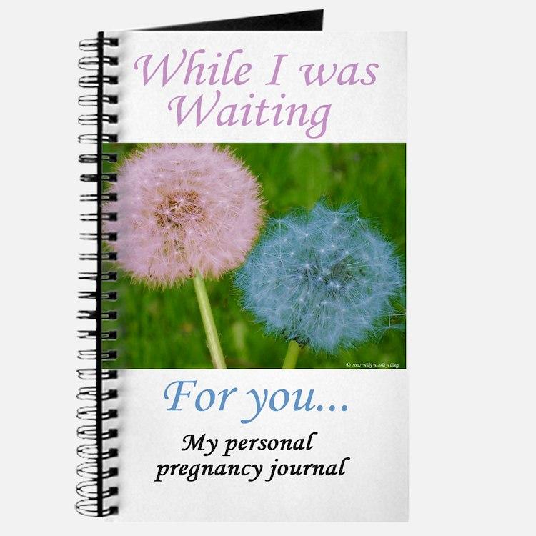 My Personal Pregnancy Journal