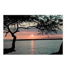 Sunset Carmel, Ca. Postcards (Package of 8)