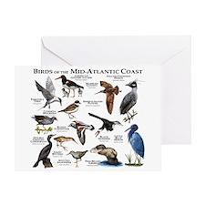 Birds of the Mid-Atlantic Coast Greeting Card