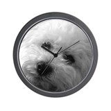 Bichon frise Basic Clocks