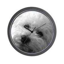 Unique Bichon frise Wall Clock