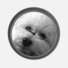 Cute Bichon frise Wall Clock