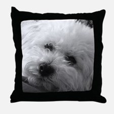 Cool Poodle Throw Pillow