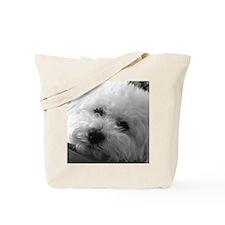 Cute Bichon Tote Bag