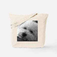 Cute Bichon frise Tote Bag