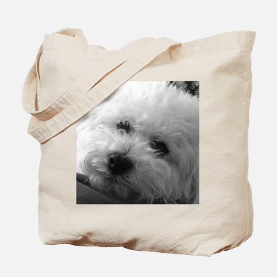 Cute Bichon frise Tote Bag