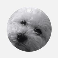 Funny White poodle Round Ornament