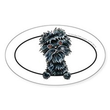 Affenpinscher Peeking Decal