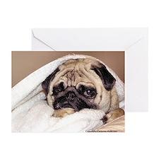 Pug Finley 2005 Set #1