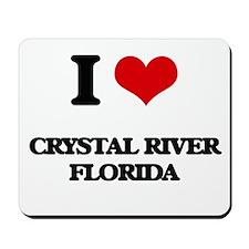 I love Crystal River Florida Mousepad