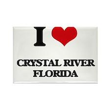I love Crystal River Florida Magnets