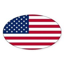 Funny America Decal