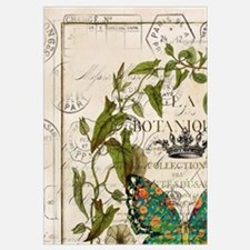 vintage botanical art butterfly