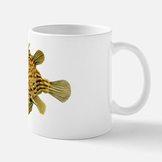 Yellow & Brown Cowfish by Ernst Haeckel Mug