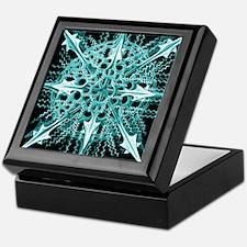 Symmetry, a Diatom by Ernst Haeckel Keepsake Box