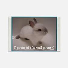 Bunny Coat Rectangle Magnet