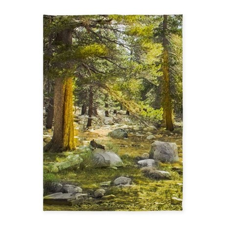 Sunlit Forest Scene 5 X7 Area Rug By 64colorliving
