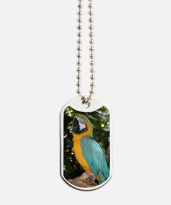 Yellow and Blue Macaw Dog Tags