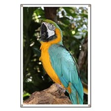 Yellow and Blue Macaw Banner