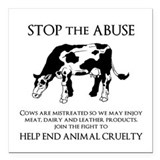 Stop animal abuse Square Car Magnets