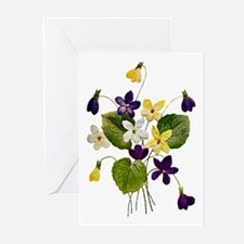 VIOLETS Greeting Cards (Pk of 20)