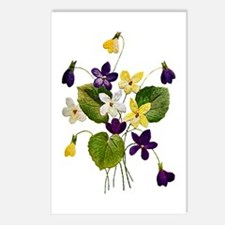 VIOLETS Postcards (Package of 8)