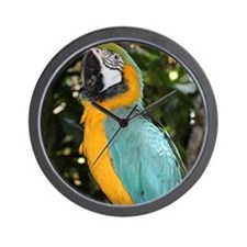 Yellow and Blue Macaw Wall Clock