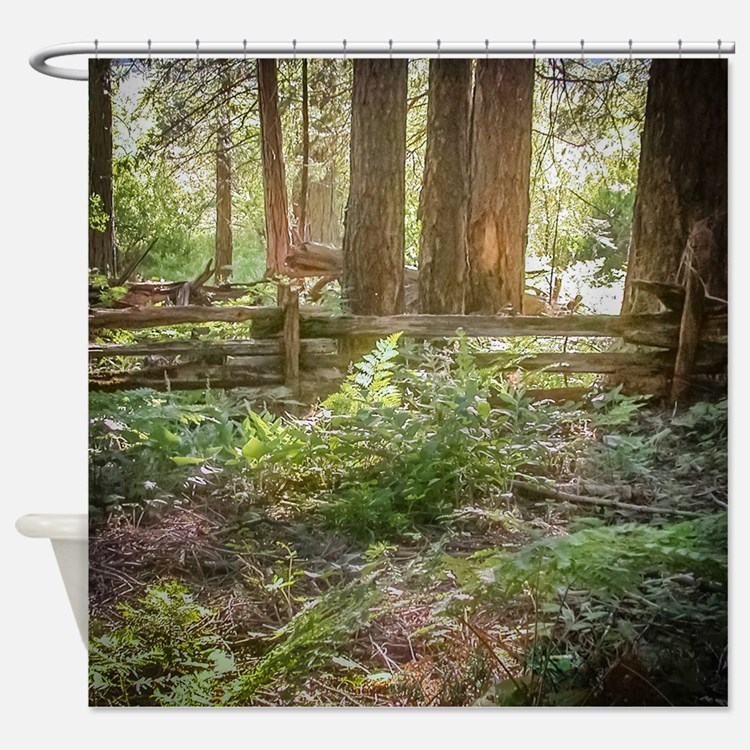 Light Through the Forest Shower Curtain