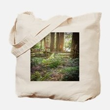 Light Through the Forest Tote Bag
