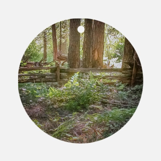 Light Through the Forest Ornament (Round)