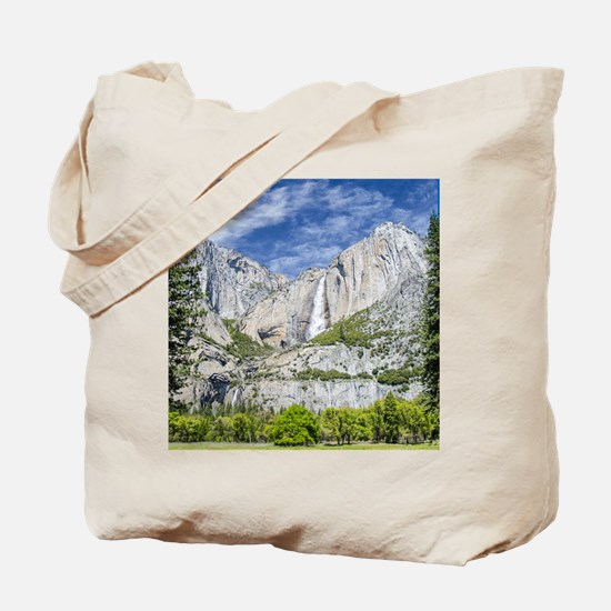 Waterfalls in the Spring Tote Bag