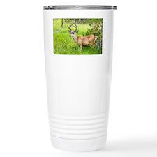 Buck in a Lush Green Me Travel Coffee Mug
