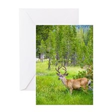 Buck in a Lush Green Meadow Greeting Card
