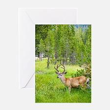 Buck in a Lush Green Meadow Greeting Card