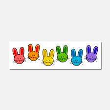 Rainbow Bunnies Car Magnet 10 x 3