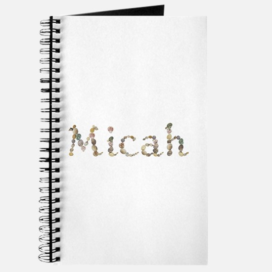 Micah Seashells Journal