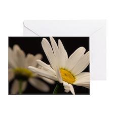 Cute Yellow daisy Greeting Card