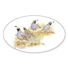 Covey of California Quail Birds Decal