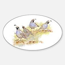 Covey of California Quail Birds Decal