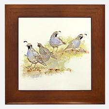 Covey Of California Quail Birds Framed Tile