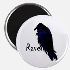 Raven Perched on Raven Magnet