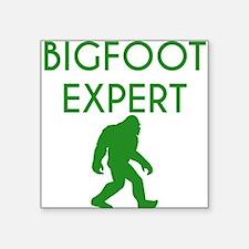 Bigfoot Expert Sticker