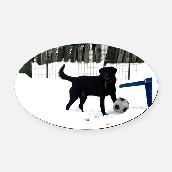 Snow Soccer Oval Car Magnet