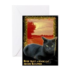 Never Trust A Black Cat Around Greeting Cards