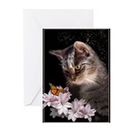 """Greeting Cards (pk Of 20) """"Cat & Butterfl"""