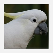 Cute White Cockatoo Tile Coaster