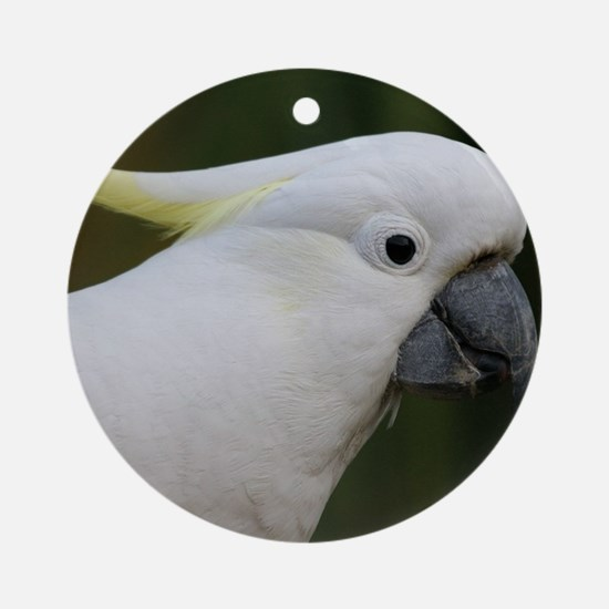 Cute White Cockatoo Round Ornament