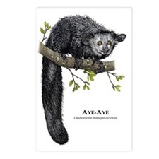 Aye-Aye Postcards (Package of 8)
